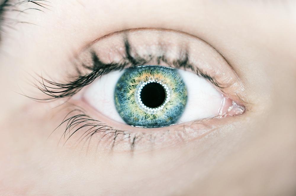Еврооптика проверит зрение наших клиентов